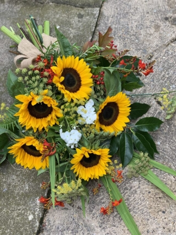 Sunflower sheaf